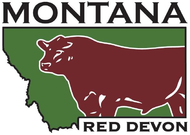 Montana Red Devons